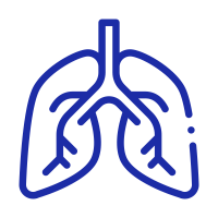 Pulmonology (Lungs Specialist)